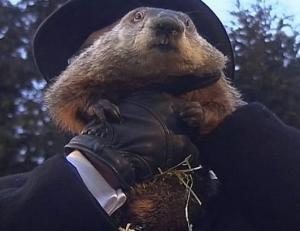 abc_groundhog_day_phil_ss_jt_130202_ssh