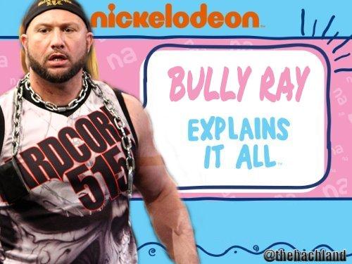bullyexplains