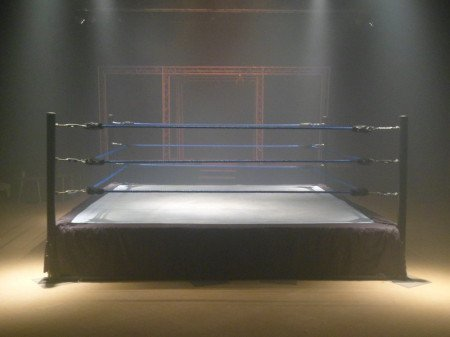 wrestling-ring-hire-boxing-ring-3002105-25384377_gallery